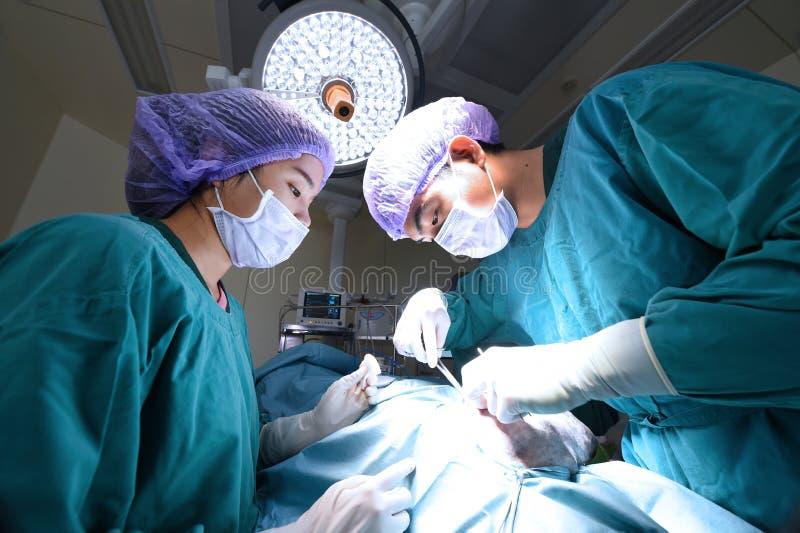 两位兽医外科医生在手术室 免版税库存图片