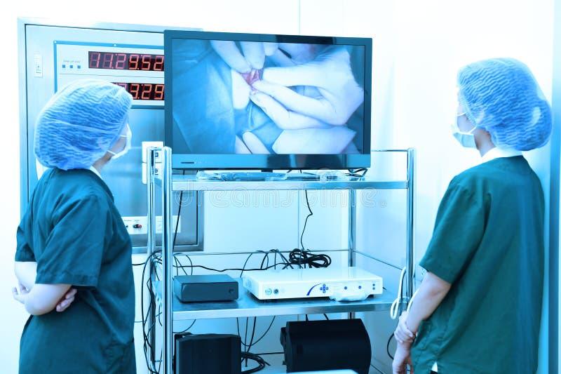 两位兽医外科医生在手术室 库存图片