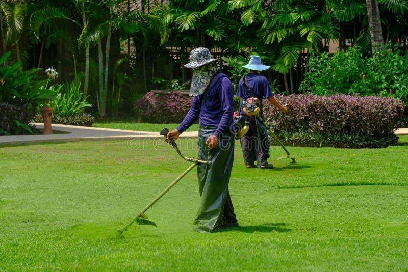 两位工作者花匠的裁减与刈草机整理者的绿草在领域 免版税图库摄影