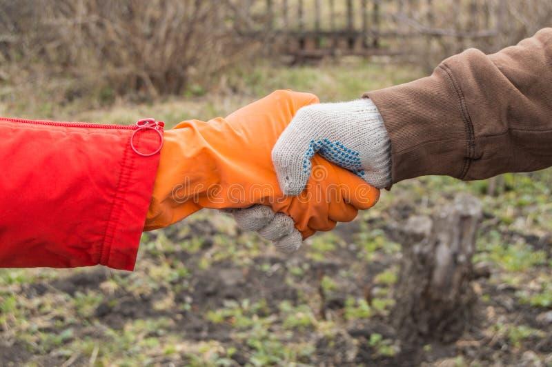 两位年轻农夫在春天,农夫的协议握手在土壤的背景的 配合的概念 库存照片