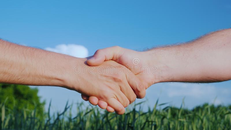 两位男性农夫握手 以一个绿色领域和蓝天为背景 在农工联合企业概念的成交 免版税库存照片