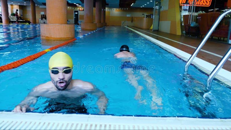 两位男性游泳者竞争在自由式冲程在一个地方游泳池,有益于体育或竞争概念 免版税库存图片