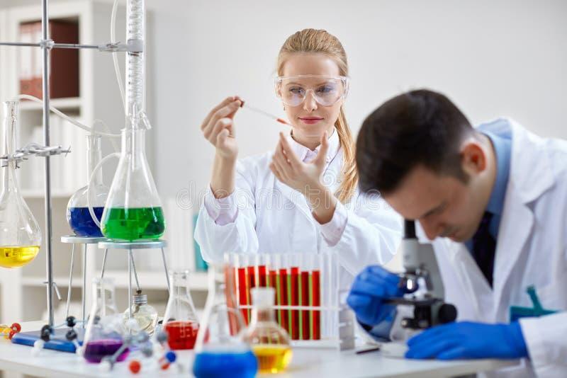 两位科学技术员在工作在实验室里 免版税图库摄影