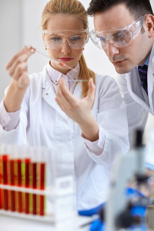 两做微生物学实验的医疗研究员 库存图片