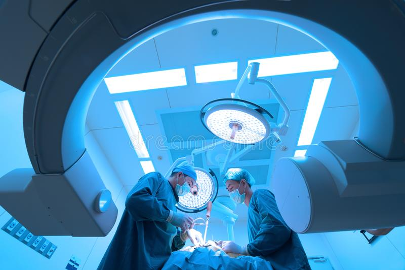 两兽医手术运转中室 库存照片