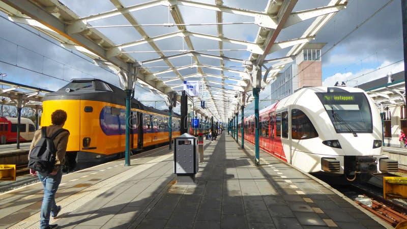两列五颜六色的市郊火车等候乘客在一个火车站在吕伐登在荷兰 库存图片
