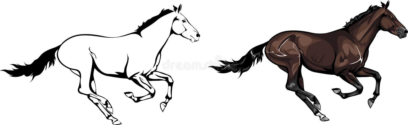 两匹疾驰的马  库存例证