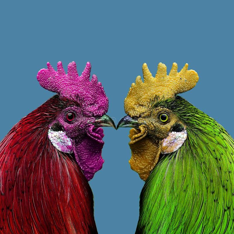 两只五颜六色的雄鸡 免版税库存图片