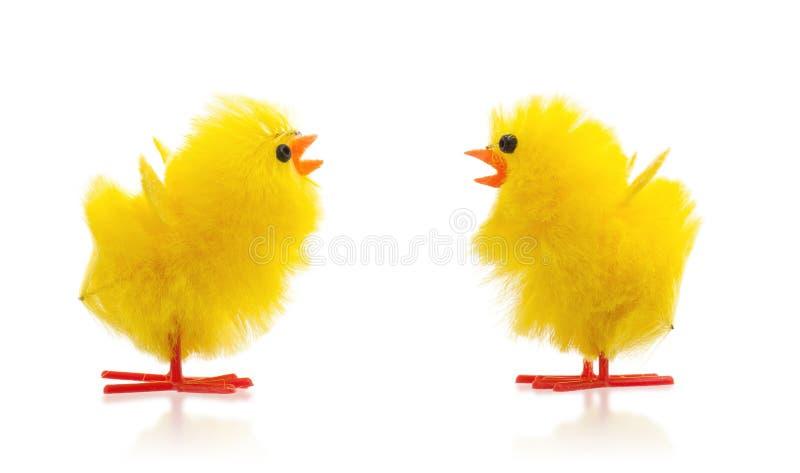 两只复活节小鸡, 免版税库存照片