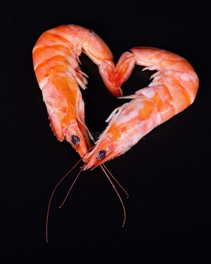 两只虾在黑背景中的形成心脏 免版税库存图片
