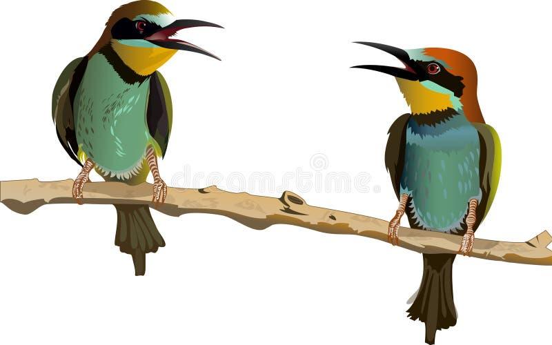 两只鸟对话  皇族释放例证