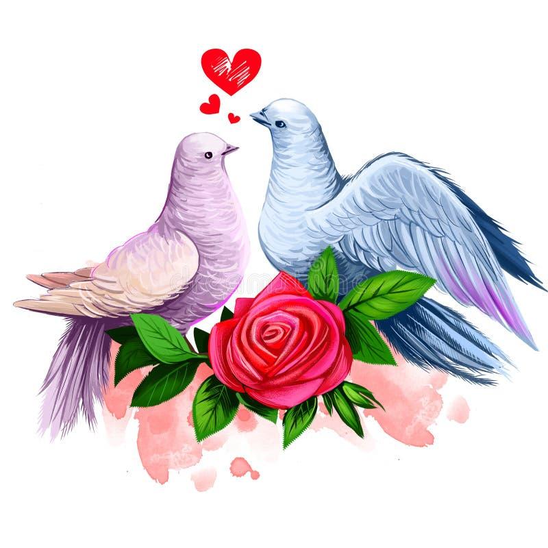 两只鸠亲吻的数字例证 和平鸠夫妇 与红色玫瑰和油漆的美好的设计飞溅 愉快的华伦泰 向量例证