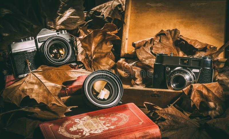 两台照相机和一个透镜有旧书、一个木箱和叶子的 免版税库存照片