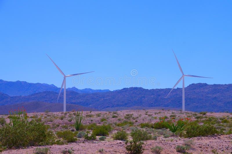 两台风轮机在沙漠在春天有山和清楚的蓝天的 库存图片