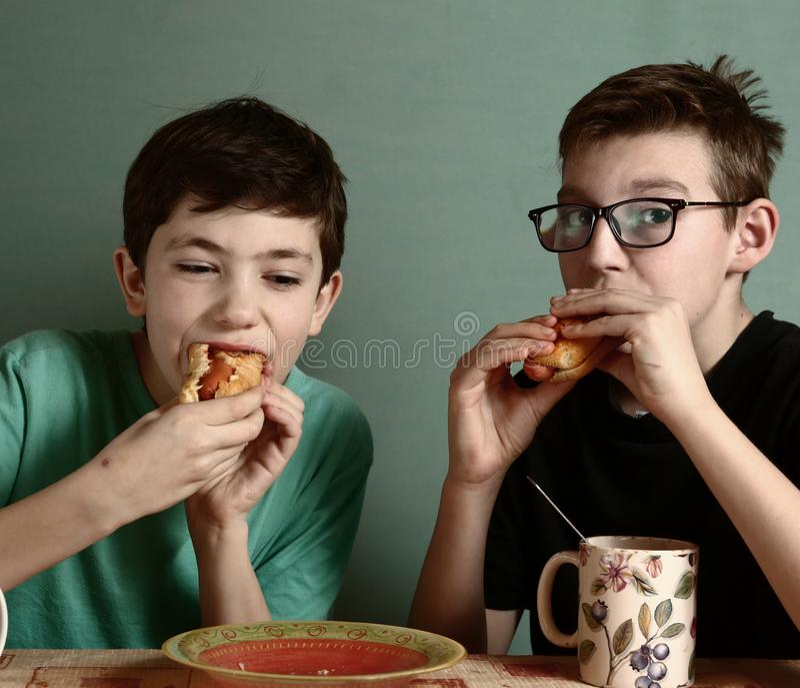 两吃热狗的十几岁的男孩在快餐餐馆 免版税库存照片