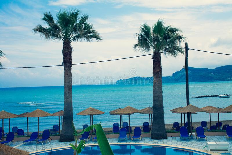 两在海滩的美丽的棕榈树 与蓝色海的假日概念在背景中 在海海滩的轻便折叠躺椅 在b的水池 库存图片