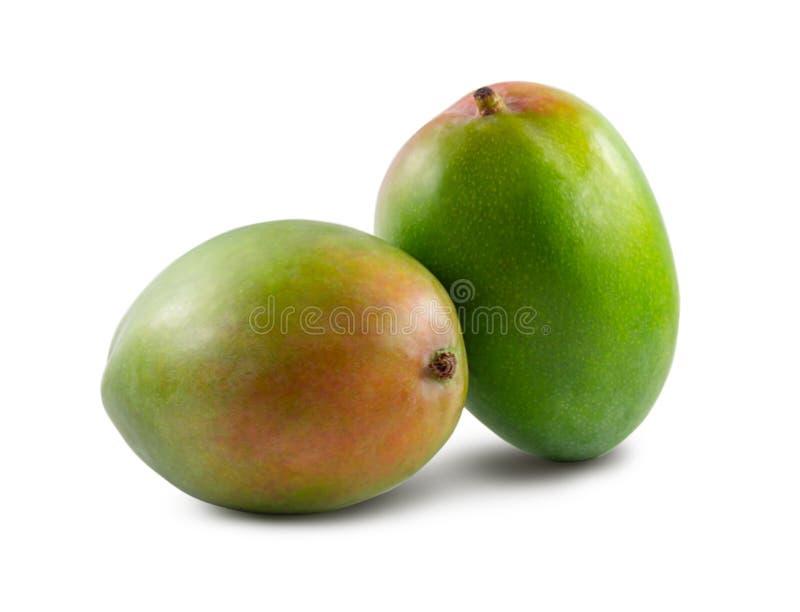 两在白色背景隔绝的芒果 免版税库存照片