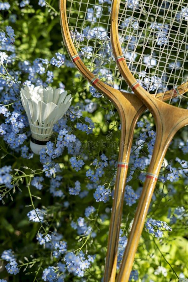 两在美丽,小蓝色花的羽毛球拍和shuttlecock谎言在庭院里在一个晴朗的夏日 库存照片