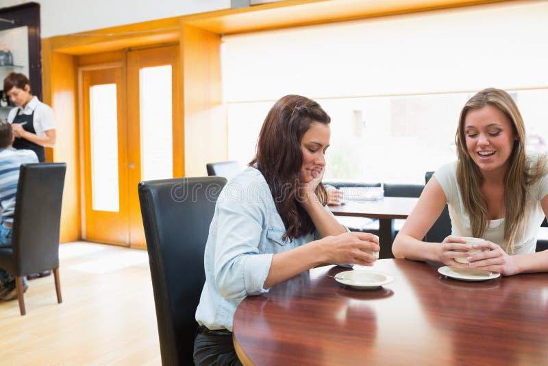 两坐在自助食堂和饮用的咖啡的妇女 库存照片