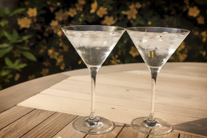 两块马蒂尼鸡尾酒玻璃在阳光下 免版税库存图片