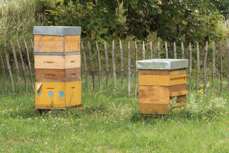 两堆蜂箱 库存图片