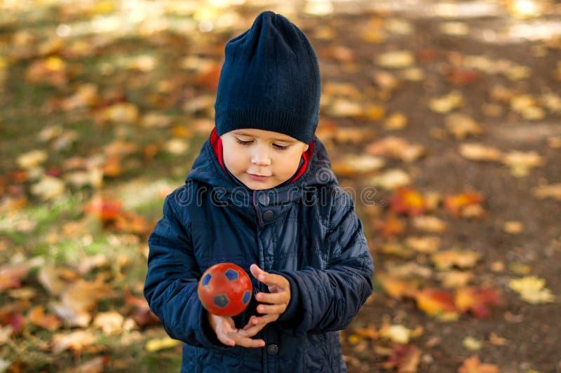 两岁的男孩在秋天公园 图库摄影