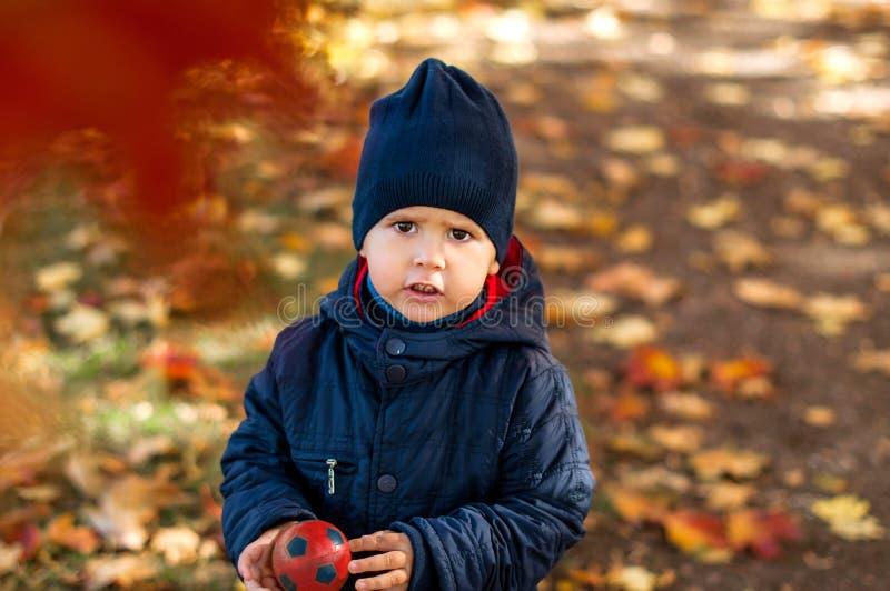 两岁的男孩在秋天公园 库存照片