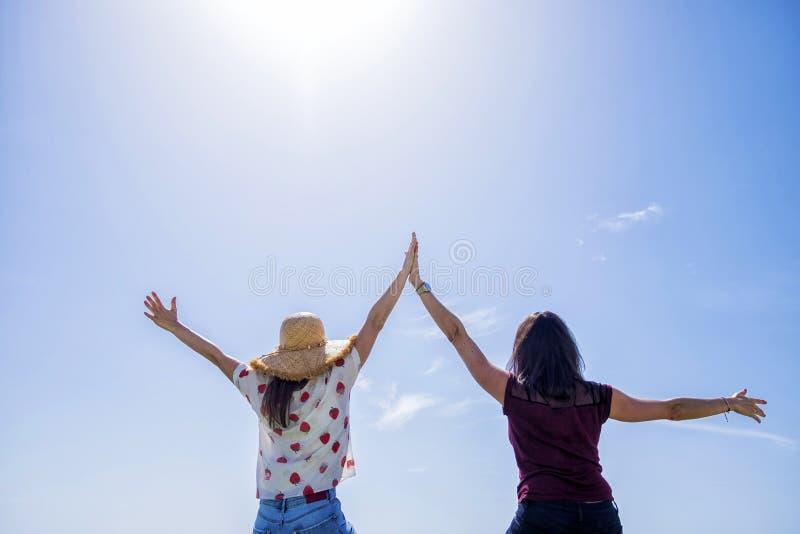 两年轻女人背面图坐有胳膊的篱芭被举反对天空蔚蓝 库存照片