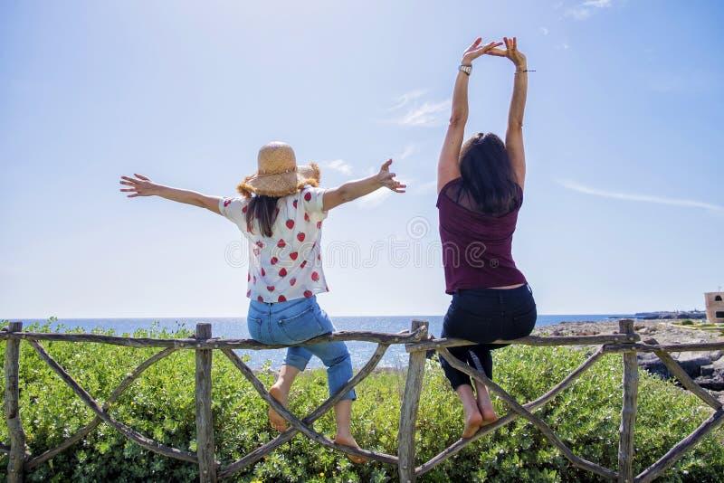 两年轻女人背面图坐有胳膊的篱芭被举反对天空蔚蓝 免版税图库摄影