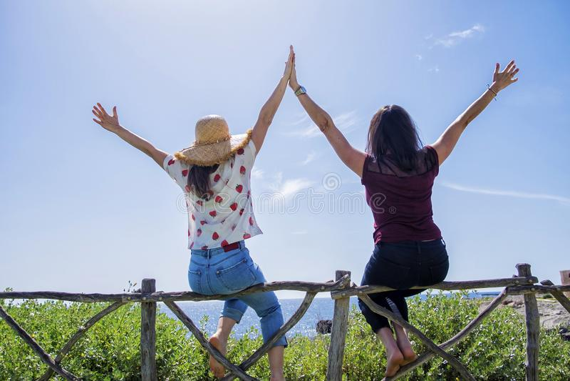 两年轻女人背面图坐有胳膊的篱芭被举反对天空蔚蓝 免版税库存照片