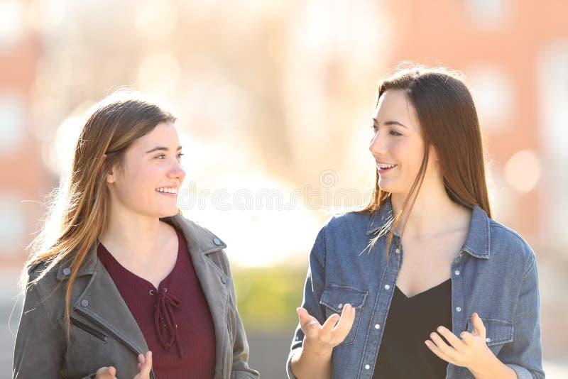 两年轻女人走和谈话在街道 库存照片