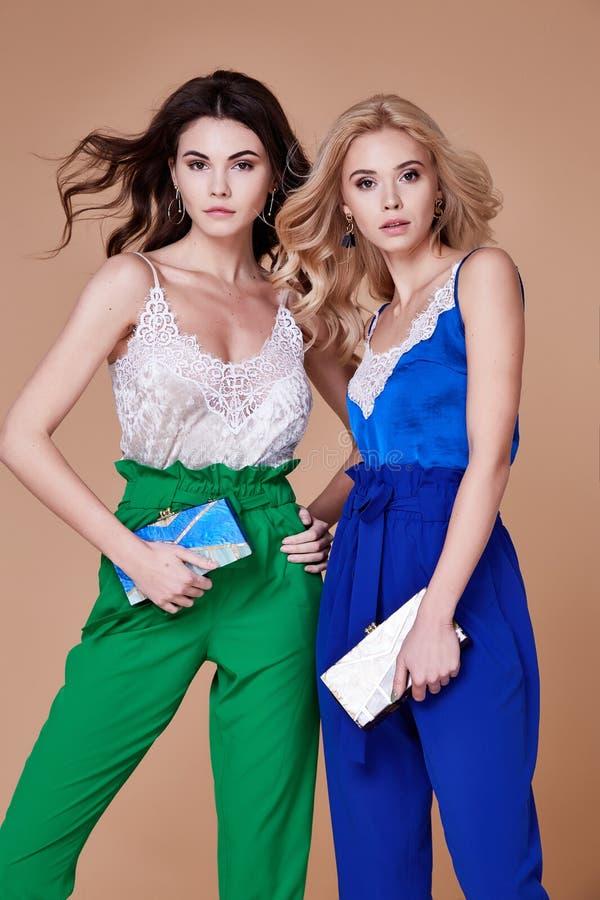 两性感的美丽的端庄的妇女夫人自然时尚样式凝块 免版税库存图片