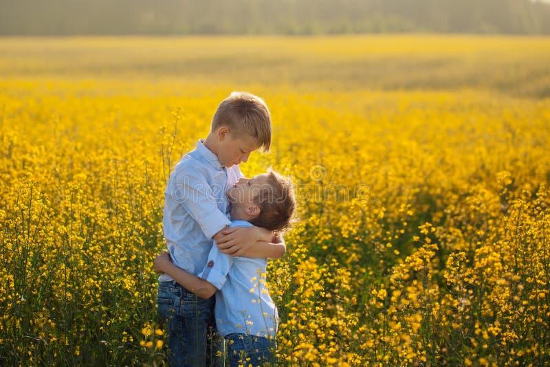 两拥抱互相的滑稽的兄弟,当在黄色领域时的步行 湿背景概念黑暗的友谊鹈鹕的纵向二 免版税图库摄影