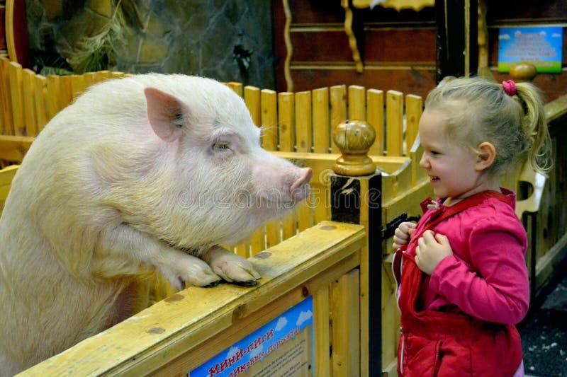 两擦净剂 女孩和猪 免版税库存照片
