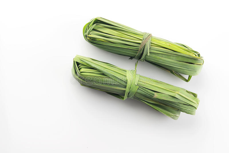 两束在白色背景的新鲜的绿色香茅在演播室射击了 图库摄影