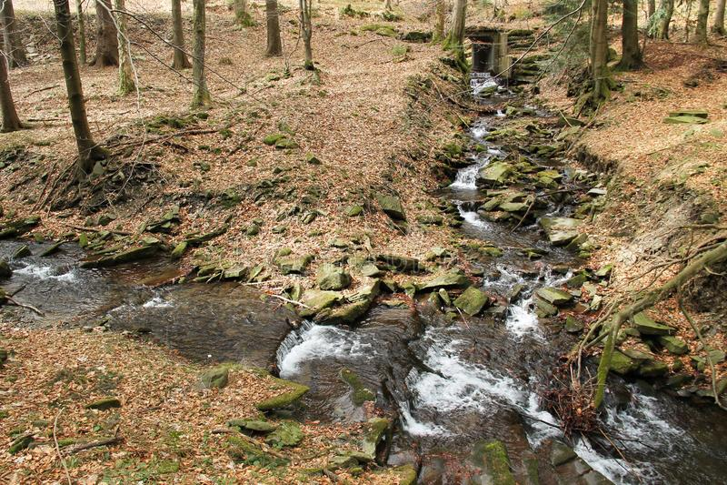 两条溪的连接点 库存图片