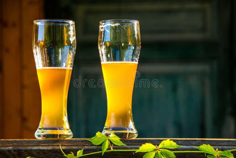 两杯低度黄啤酒 库存照片