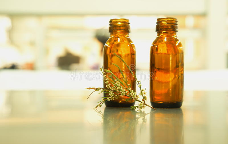 两棕色瓶用花草本 库存图片