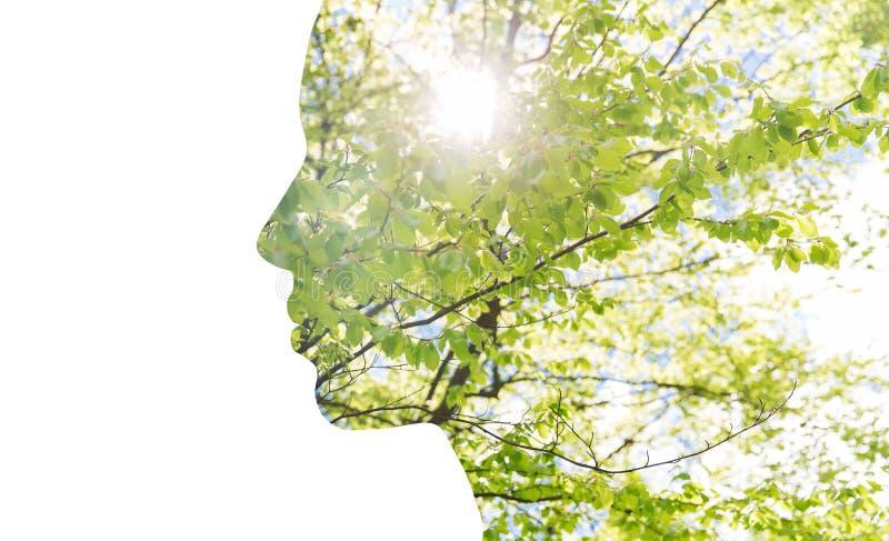 两次曝光与树叶子的妇女外形 库存照片