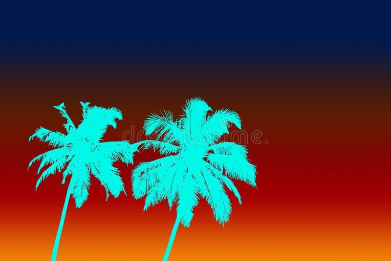 两水色颜色棕榈和梯度天空 库存图片