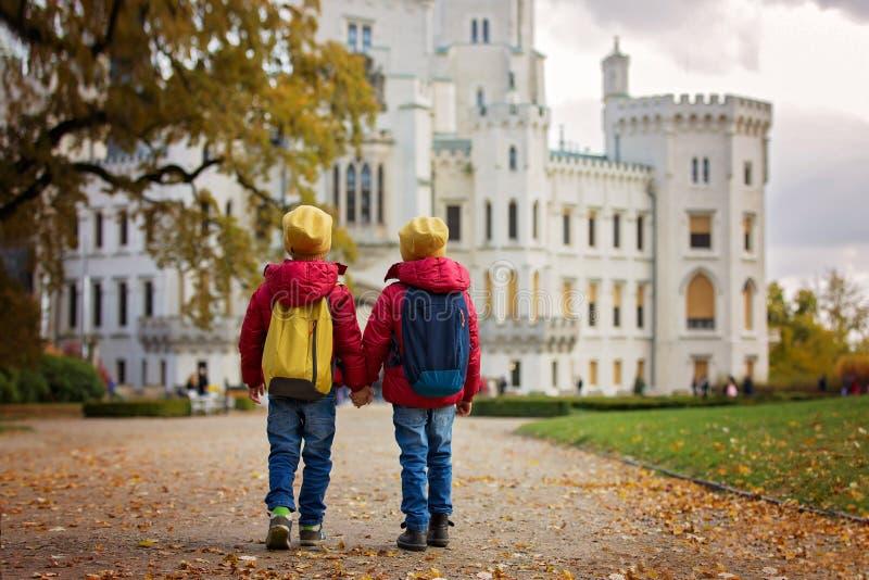 两漂亮的孩子,男孩兄弟,走在好漂亮的东西或人的一条道路 库存照片