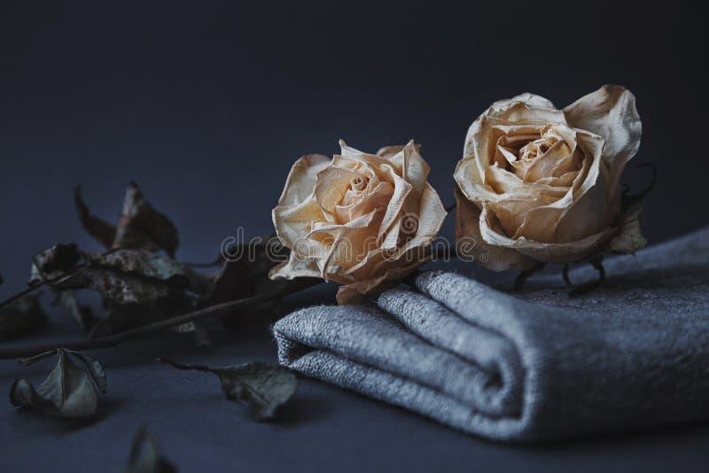 两烘干了在灰色背景的白玫瑰与自然亚麻制drap 库存图片