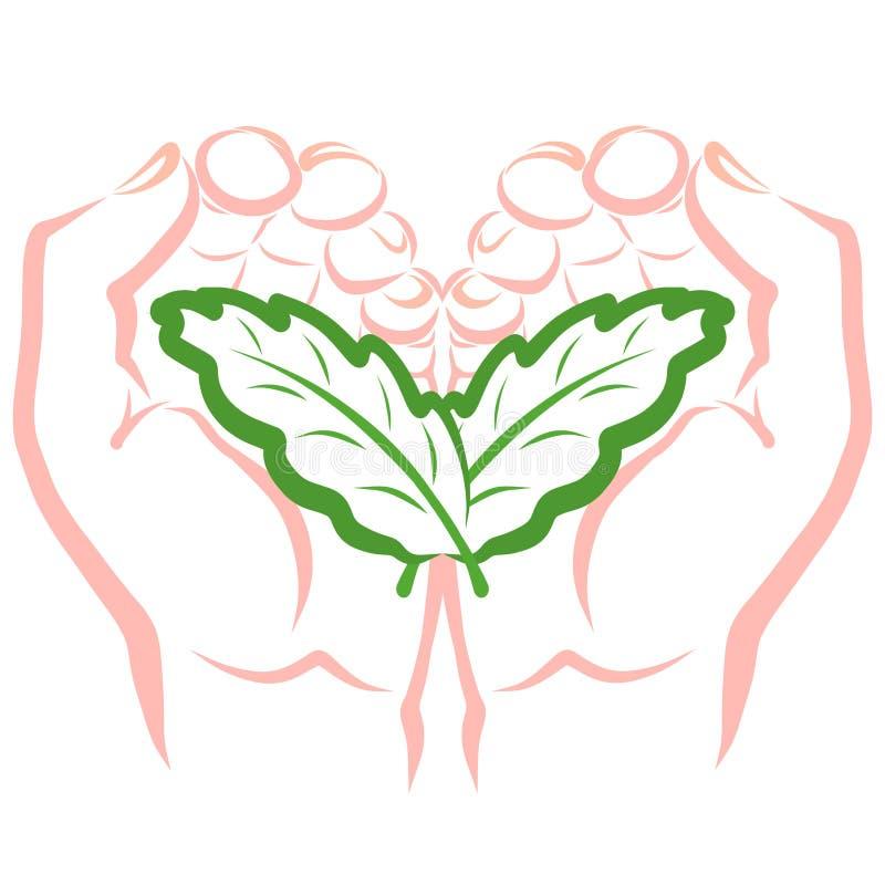 两片叶子类似于翼和心脏在手上 库存例证