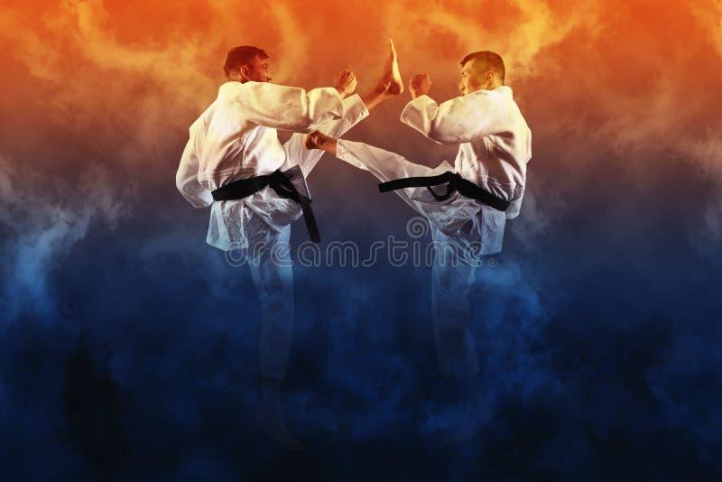 两男性空手道战斗 免版税库存照片