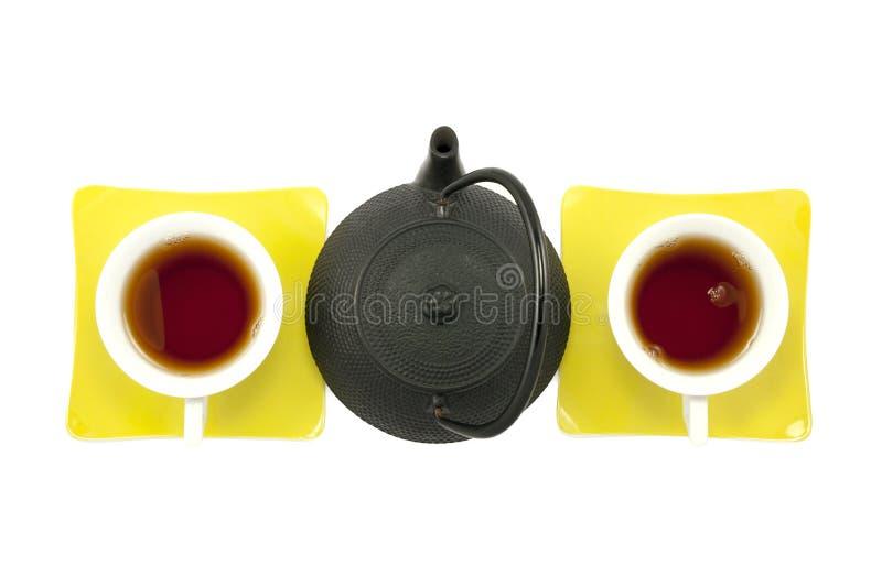 两的,组织的女性女性茶 免版税图库摄影