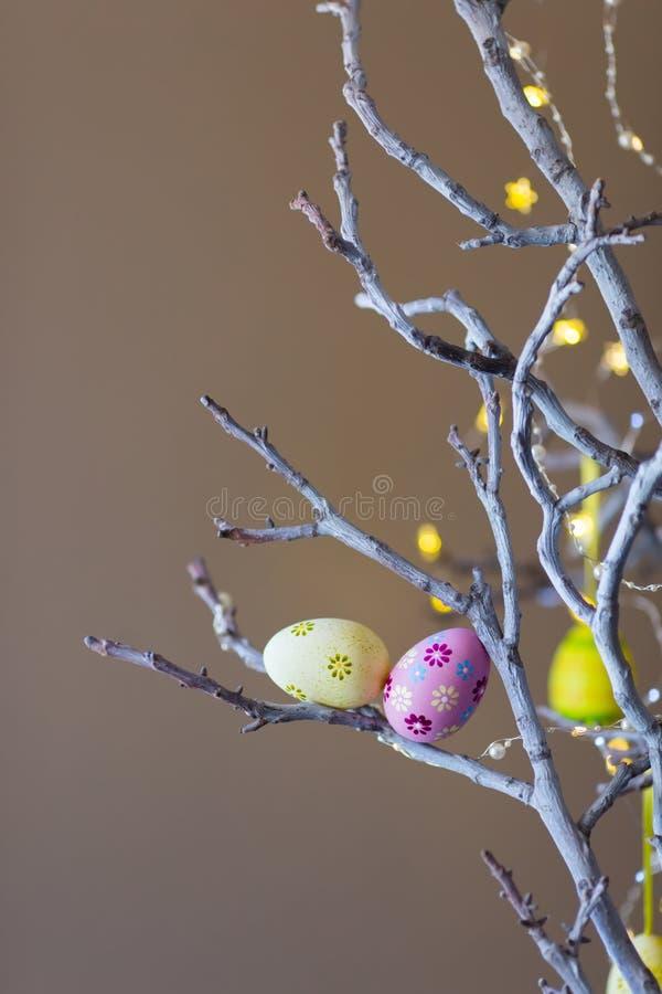 两装饰了在树枝的五颜六色的复活节彩蛋室内与在背景的温暖的bokeh 库存图片