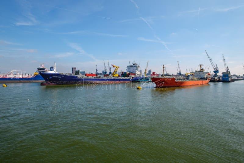 两辆海罐车靠了码头在浮体在鹿特丹港口 库存照片