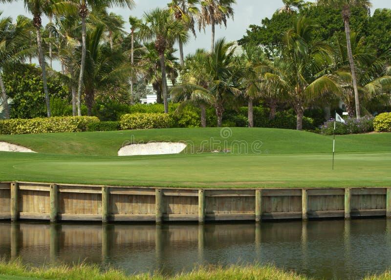 两道菜的佛罗里达高尔夫球绿色 免版税库存图片