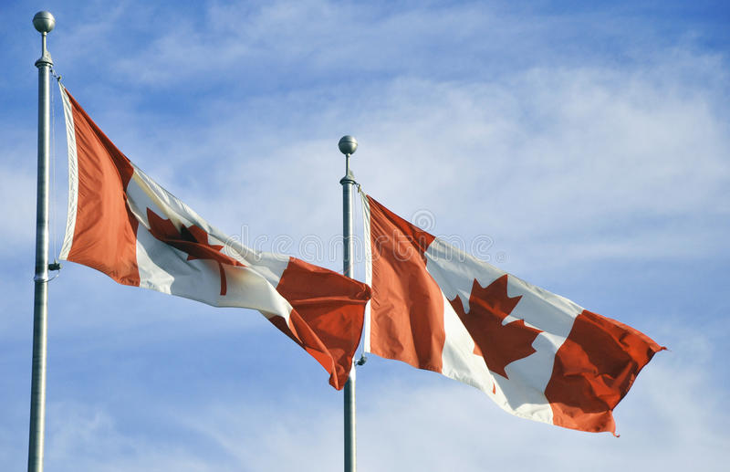 两面加拿大旗子 免版税图库摄影
