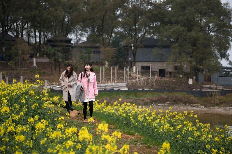 两黄色油菜籽花的女孩 免版税库存照片